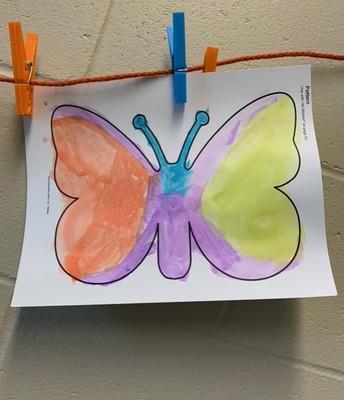 BK butterfly