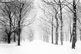SNOW DAYS/REMOTE DAYS