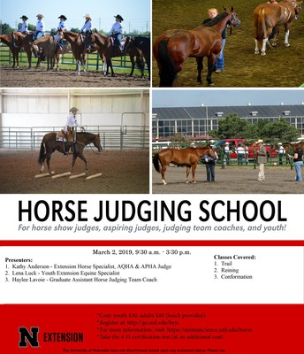 Horse Judging School