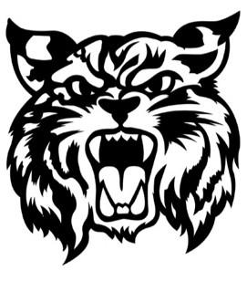 Braymer C-4 School District