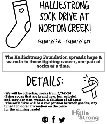 Hallie Strong Sock Foundation - Sock Drive