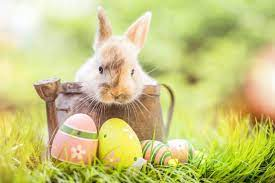 Let's look at Easter!