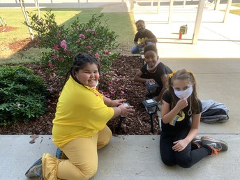 Students planting flowers on World Kindness Day