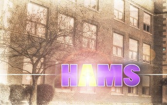 About HAMS