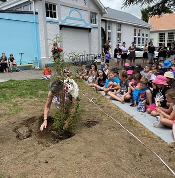 Mrs Parker planting the 'Mrs Parker tree'