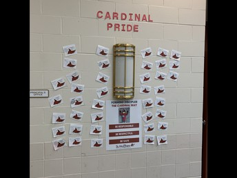 Cardinal Pride Wall