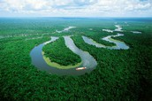 how long is the amazon river