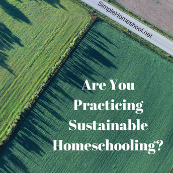 Are You Practicing Sustainable Homeschooling?