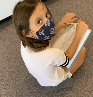 Annotating and Literature Analysis in 3rd Grade