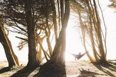 Health Benefits of Sleeping Outside
