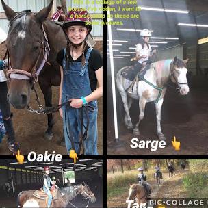 Rebekah's Horses