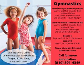 Gymnastics - Fall Classes