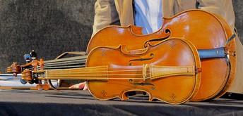 CURS D'ESTIU SUZUKI (violins i violoncels)