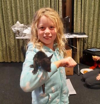 Aleisha Chadwick's baby possum!