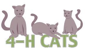 4-H Online Cat Club