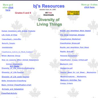 Screenshot of BJ's Resources website