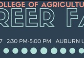 College of Agriculture Career Fair