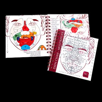 MiniBook de los esquemas