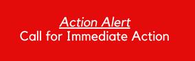 LAN Action Alert: Call for Immediate Action