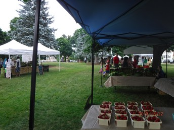 Franklin Farmers' Market on the Town Common