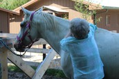 MARY'S UNBRIDLED ACRES STORY