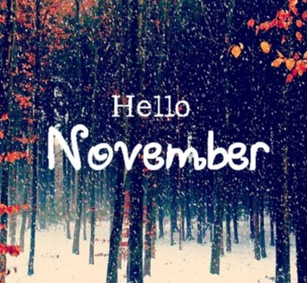 Welcome to the November 2018 Newsletter!