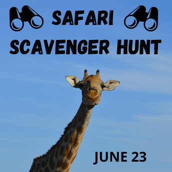 Jungle Animal Safari Scavenger Hunt