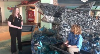The Florida Aquarium may be closed... But is offering SEA-SPAN daily live videos to further educate young learners