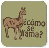 Spanish Phrase of the Week