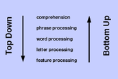 Comprehension Models