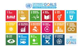 Infographic UN Sustainable Development Goals