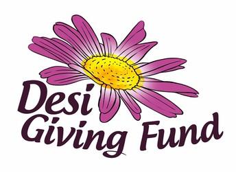 New Fund Spotlight:  Desi Giving Fund
