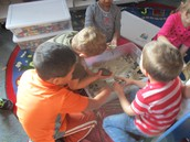 Students in the Sensory Ocean Animal Play in the Sand