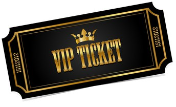 The VIP Concert Experience . . .