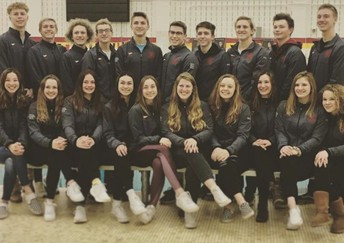 Avonworth/Northgate Swimmers Compete at the WPIAL Championship
