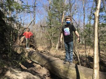 Nature Trail Fun!