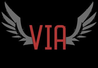 VIA Information