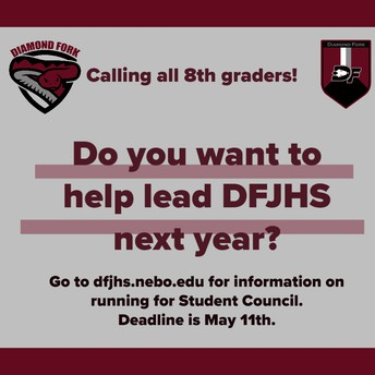 2020-21 Student Council Application Information