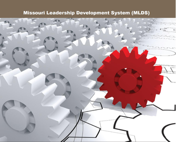 The Next in a series of MLDS Articles...Innovative Leadership