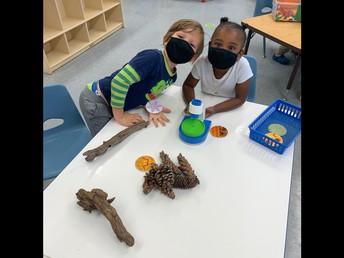 What's Happening in Preschool??