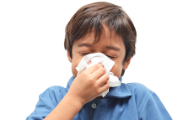 Defending against influenza and respiratory illness.