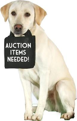 AUCTION ITEMS STILL NEEDED