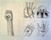 Featured Artist: Dalania C