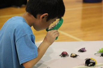11th Annual Fife School District Science & Technology Showcase