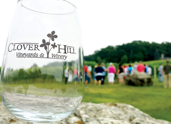 Vineyard & Winery Tour at Clover Hill