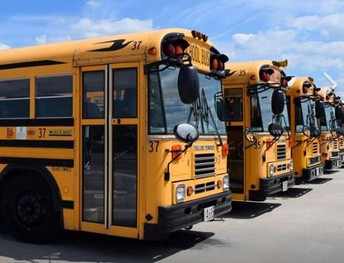 Levy Perspective: BUSES