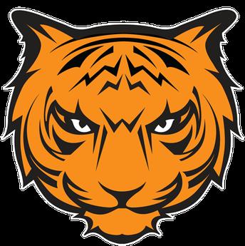 Waynesville Tigers Scoring - (44)