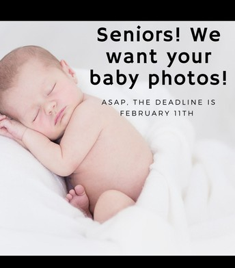 Senior Baby Photos