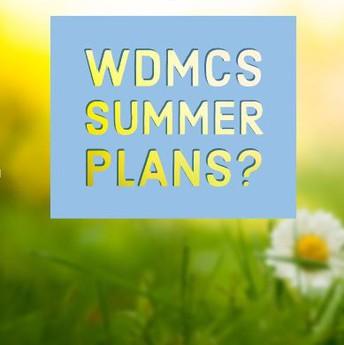 Summer plans graphic