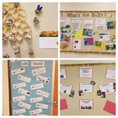 2nd Grade PBL: What's the Buzz?